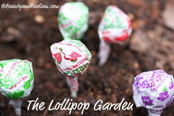 Lollipop-Garden1