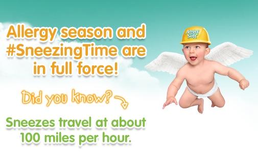 SneezingTime_Allergy Fact 1
